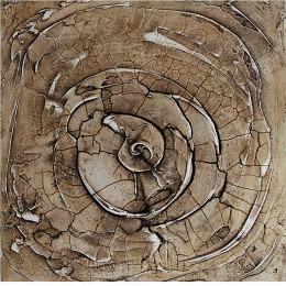 Fossile Schnecke